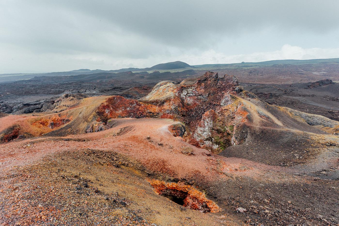 Galapagos - Sierra Negra Volcano (65 of 72) June 15