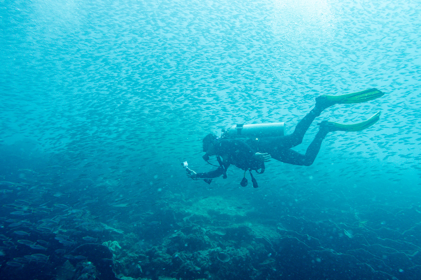 an overview of the sport of scuba diving