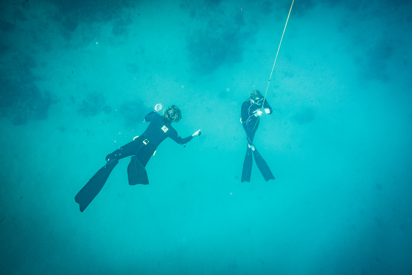 Is Freediving in The Philippines Worth It? - Bold Travel
